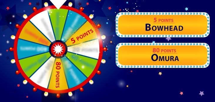 Wheel Decide Robux Free Robux Get Points Lucky Wheel Quiz My Neobux Portal