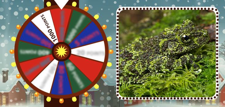 Lucky Wheel: Christmas Edition Quiz 2 - My Neobux Portal